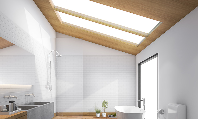 iGlass Applications - Skylights